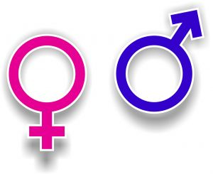 gender-symbols-1069414-m